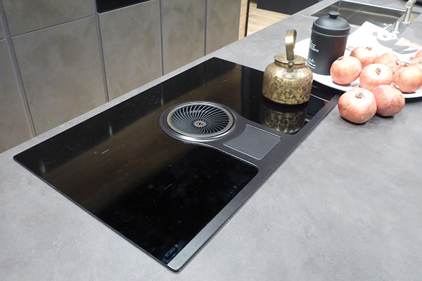 Stove with integrated hood